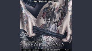 Tremenda Sata (Remix) (feat. Daddy Yankee, Nicky Jam, Arcangel, De La Ghetto & amp; Plan B)