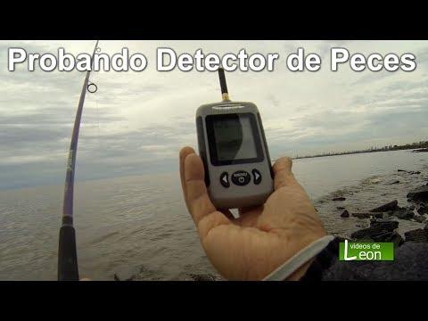 Probando Detector de Peces Portátil