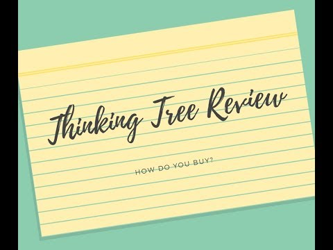 Thinking Tree Level B Literature Book Review