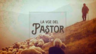 LA VOZ DEL PASTOR-El Catecismo-19