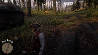 Red Dead Redemption 2 pro mlg