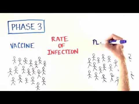 אלו הם שלבי הפיתוח והניסויים שעוברים החיסונים שמגנים עלינו מפני מחלות