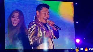 PSY At NIKE 'Great Festival' Concert Seoul 2019 (Gangnam Style, Gentlemen, I Luv It)