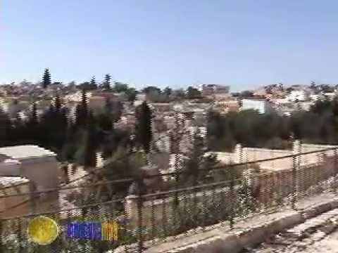 סיור בטיילת החומות הצפונית של ירושלים