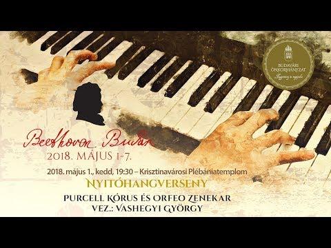 Beethoven Budán 2018 - Nyitóhangverseny - video preview image