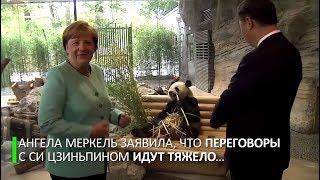 Ангела Меркель и Си Цзиньпин посетили зоопарк в разгар переговоров