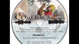Helena Rhabbles - Heavens Came Down    (My Testimony Album)  PROMO ONLY