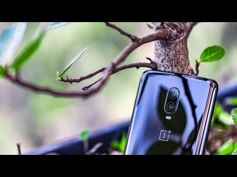 OnePlus 6T Camera Review