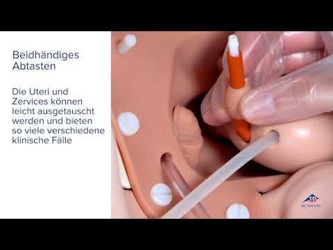 Bewertungen von Prostata massazhory