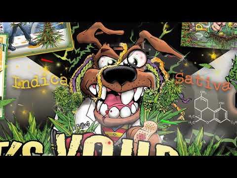 Ragga Jungle- DnB Mix, Rastafari Roots Vol.12 (mixed by KingWuppi) xx11.01.2020xx