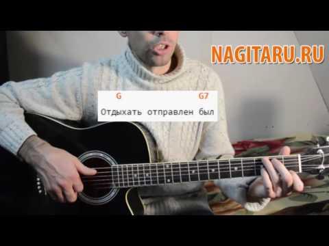 Детская песня под гитару - 33 коровы - Аккорды и разбор | Nagitaru.ru