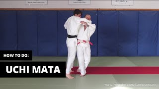 How to do Uchi Mata