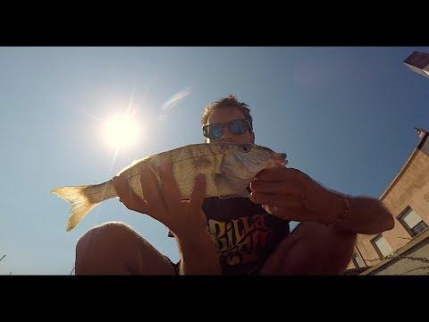 Le seggiole pieghevoli per pescare dalle mani