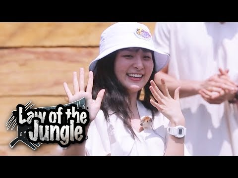 Seul Gi (Red Velvet) & Lee Sung Hoon (Winner) Has Joined Law of the Jungle at Last!!!