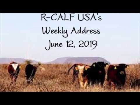 R-CALF USA's Talks on the Antitrust Lawsuit Against the Big 4 and Tariffs on Mexican Cattle Imports