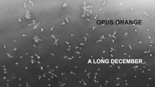 Opus Orange – A Long December (Counting Crows cover)