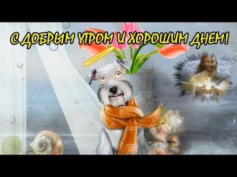 С добрым утром и хорошим днем!Православная открытка с пожеланием хорошего дня!