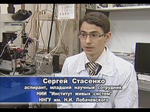 Perdita di peso del dottore Volkov