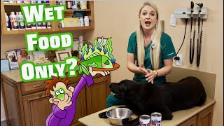 My Dog Eats Wet Food Only? | Is that OK?
