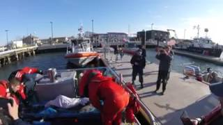 Stranded dolphin rescued, set free back into the sea