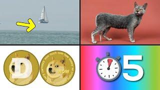 30 Cosas que no sabias hace 5 minutos ⏰ [50]