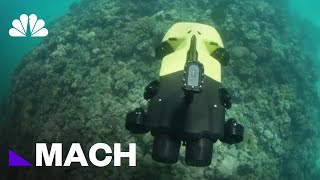 Ranger Danger: A Killer Robot That Could Protect The Great Barrier Reef   Mach   NBC News