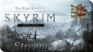 TES V: Skyrim Special Edition[#1] - Рождение Героя (Прохождение на русском(Без комментариев))