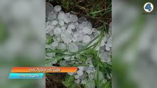 Сильний вітер та град на Тернопільщині пошкодили майбутній урожай, дахи будинків та паркани