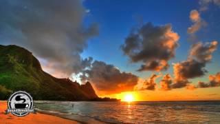 [Reggae] Ziggy Marley - Beach In Hawaii