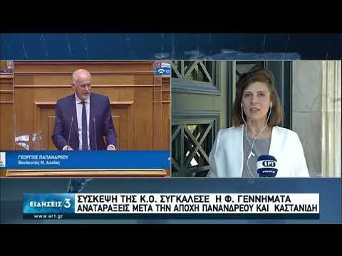 Σύγκληση της Κ.Ο. του ΚΙΝΑΛ μετά τις διαφοροποιήσεις Παπανδρέου και Καστανίδη | 10/07/20 | ΕΡΤ