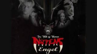 #03 Simpatico (D-A-D) - Soundtrack Nattens Engel.wmv
