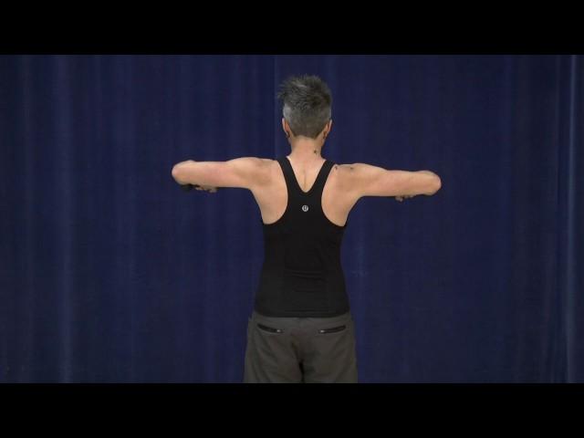 Shoulder abduction (standing)*