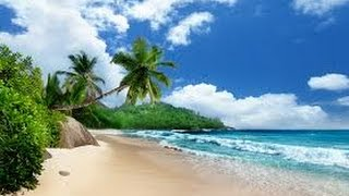 Сейшельские острова. В сердце океана HD документальные фильмы онлайн документальные фильмы hd