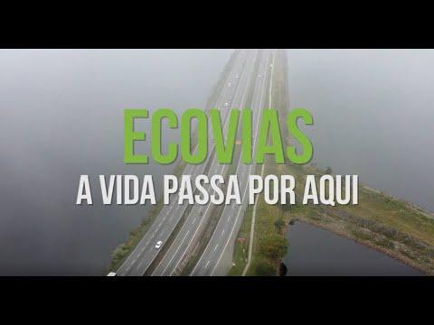 Projeto Ecovias, a Vida Passa por Aqui - Segurança