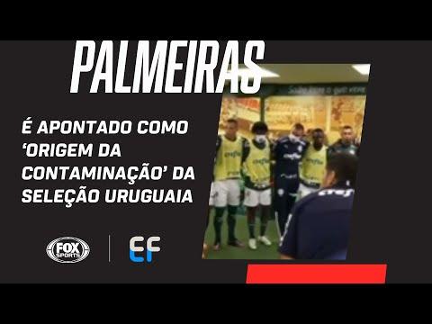 PALMEIRAS É APONTADO COMO 'ORIGEM DA CONTAMINAÇÃO' DA SELEÇÃO URUGUAIA, DIZ JORNAL; EF comenta