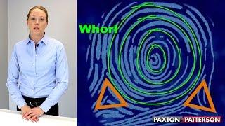Fingerprint Patterns And Characteristics