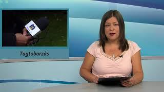 TV Budakalász / Budakalász Ma / 2018.07.12.