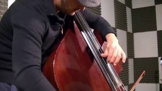 Astor Piazzolla - Libertango - Double Bass Solo