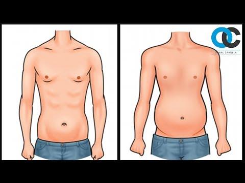 Como adelgazar en 28 días o de que callan los médicos y los dietólogos bajar pdf
