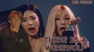 {PINK HAIR REACTIONS 24} Red Velvet (레드벨벳) RBB (Really Bad Boy) - MV Reaction