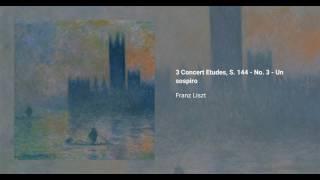 3 Concert Etudes, S. 144