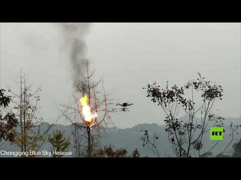 العرب اليوم - شاهد: طائرة مسيرة تستخدم قاذف اللهب للقضاء على أعشاش الدبابير في الصين