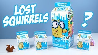 Lost Kitties Series 1 Toy Unboxing Surprise Hasbro
