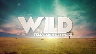 WildTV - The World