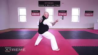 Kata 03.3 -White Belt – Taikyoku Sandan – Practice