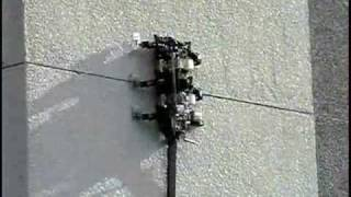 Boston Dynamics RiSE V2 and V3