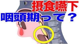 咽頭期って何?