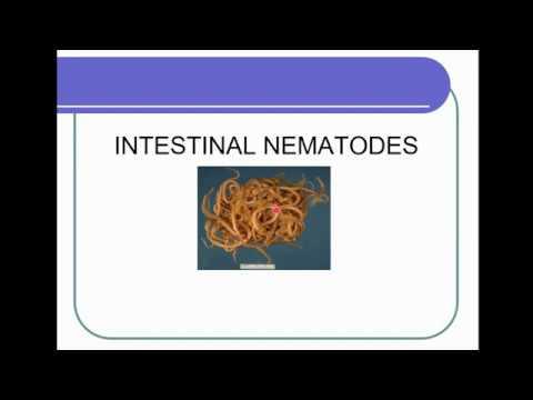 Supradozaj de pastile de vierme