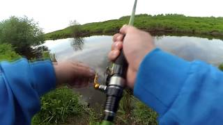 Куда съездить на рыбалку в архангельске
