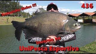 Inverno no Unipesca com os gigantes - Fishingtur na TV 436